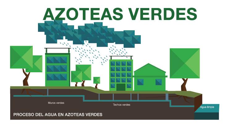 Ganando cuidando la ciudad city manager for Muros verdes beneficios