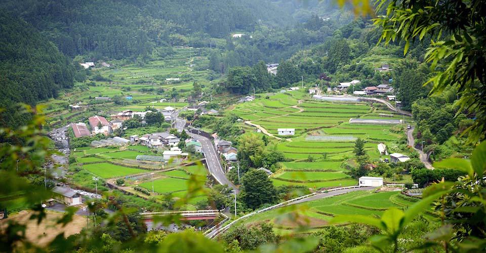 Kamikatsu, el pueblo cero basura