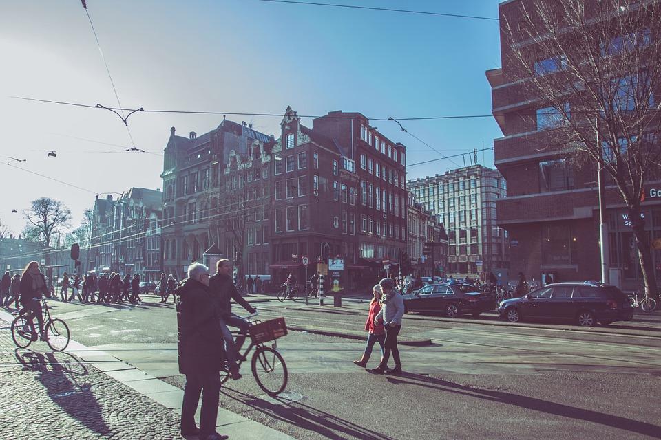 Casas de pájaro regalan Wi-Fi a los habitantes de Ámsterdam por buena calidad del aire