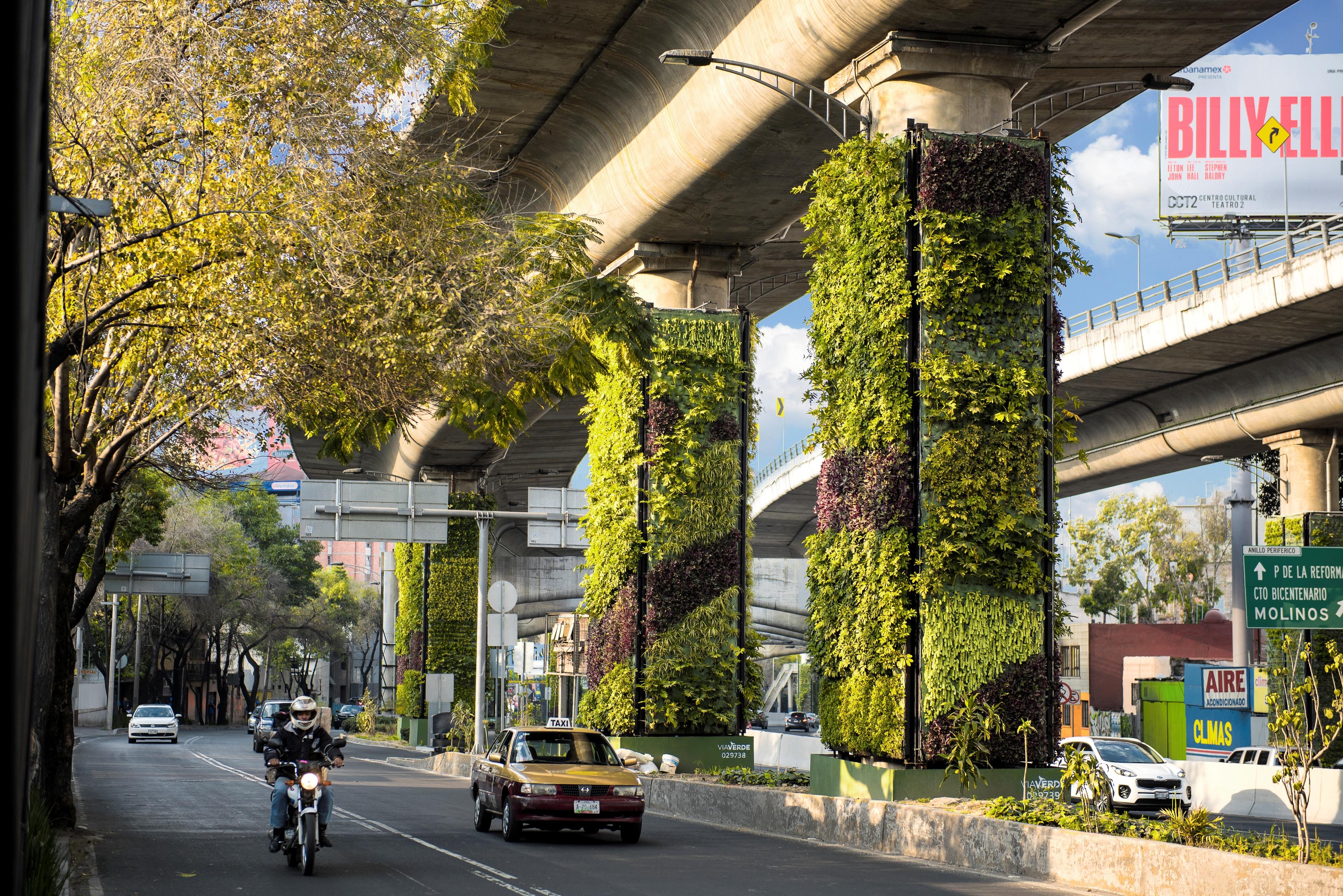 Transforman columnas de Periférico en jardines verticales