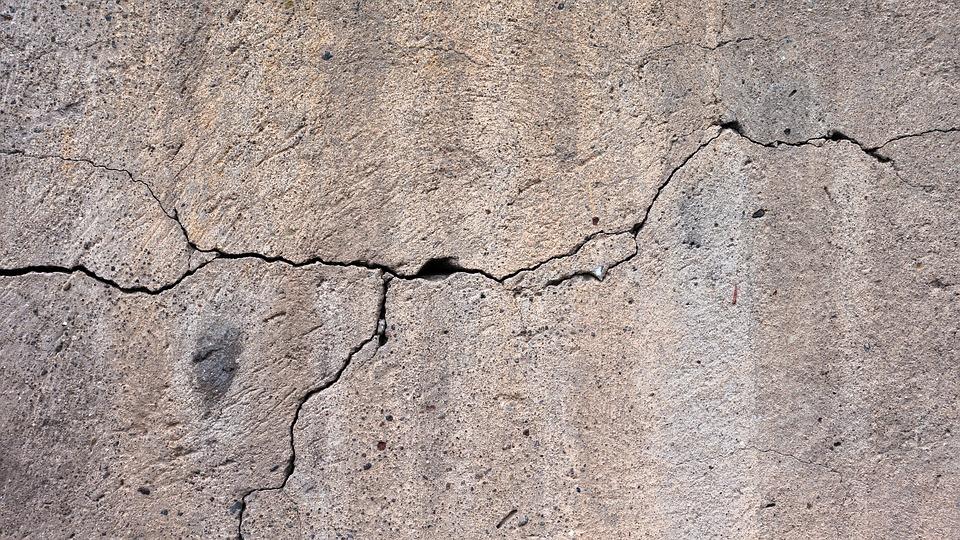 El nopal mejora durabilidad del cemento
