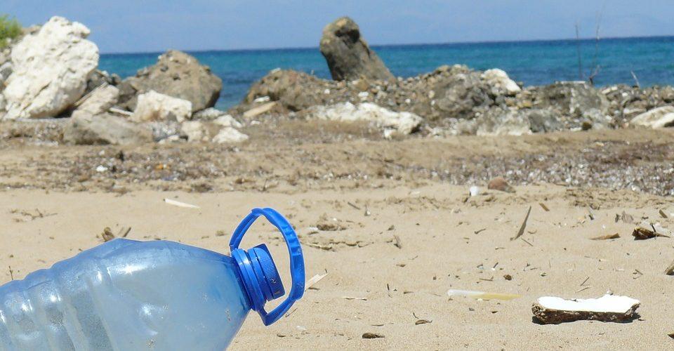 Aumentan plásticos en océanos y disminuye fauna abisal