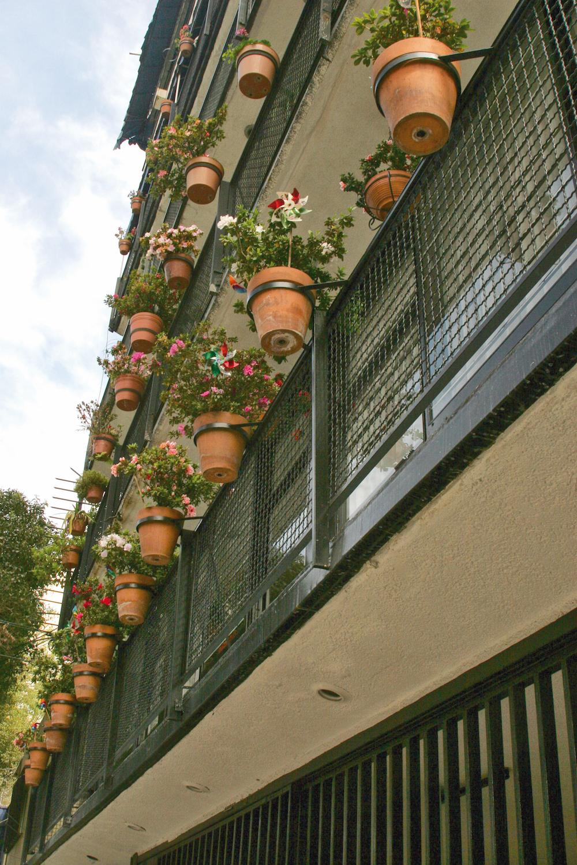 azoteas verdes en la ciudad de mexico