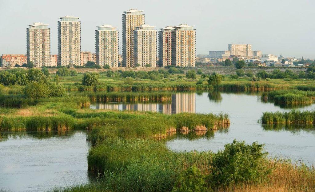 Surge de las ruinas un parque urbano con ecosistema variado