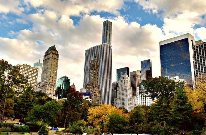 ¿Qué elementos son base para crear ciudades verdes?