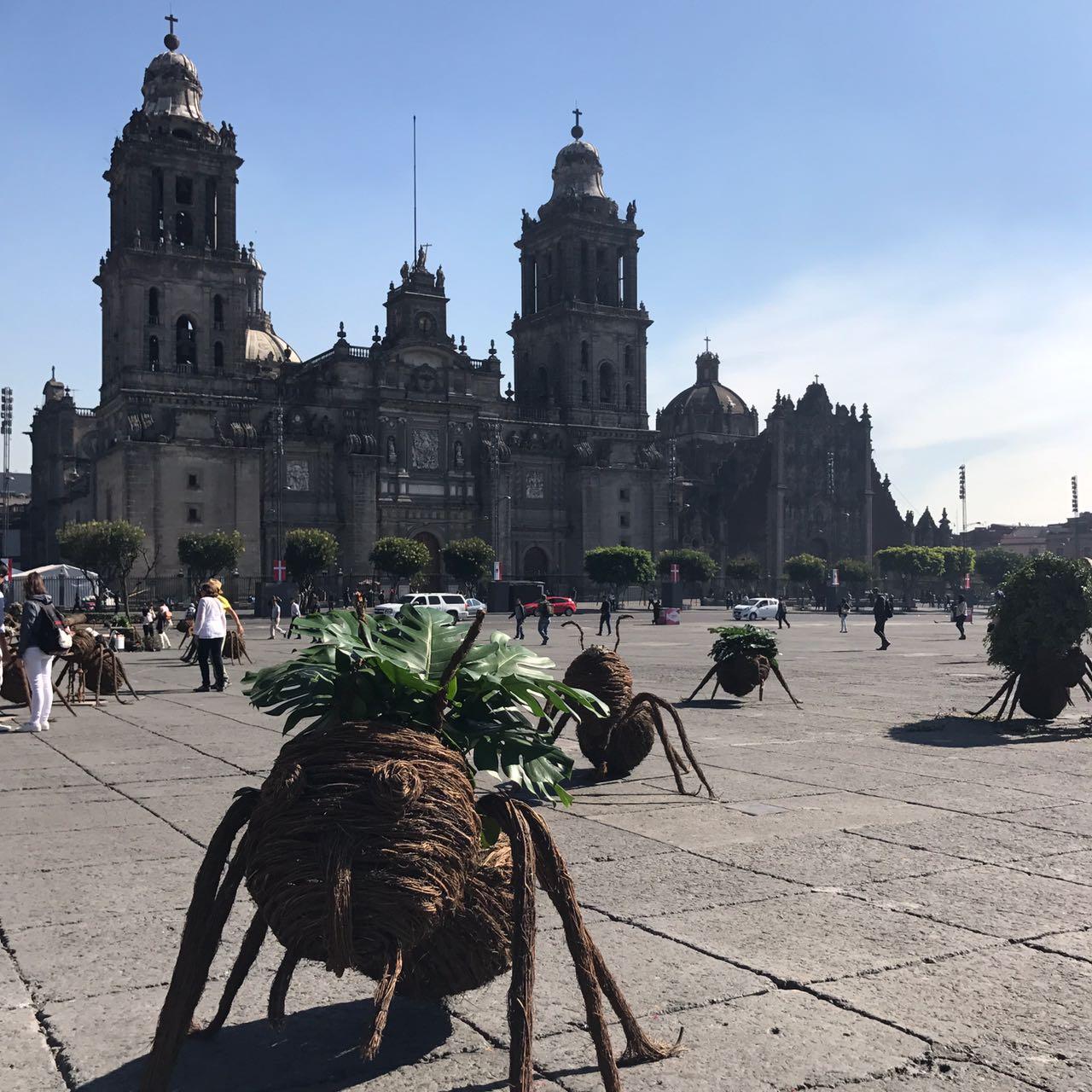 Arte urbano invade espacios públicos de la CDMX