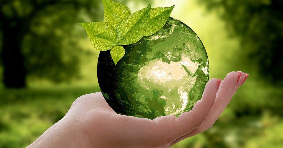 Día Mundial del Medio Ambiente, 5 de junio